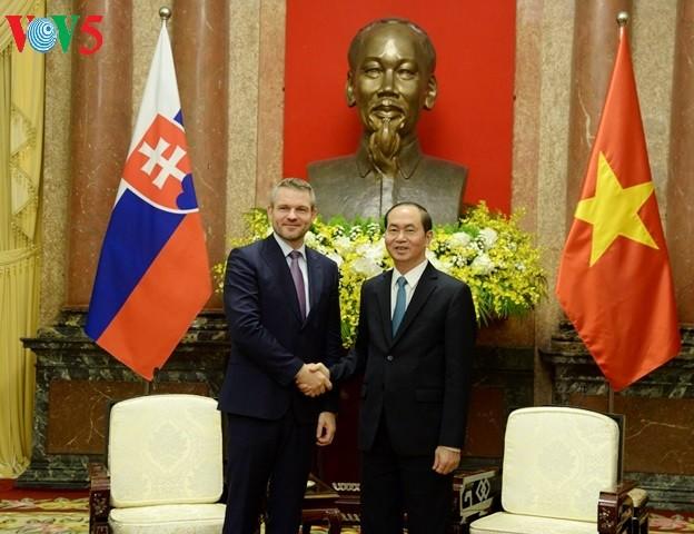 Presidente vietnamita recibe al vice premier eslovaco  - ảnh 1