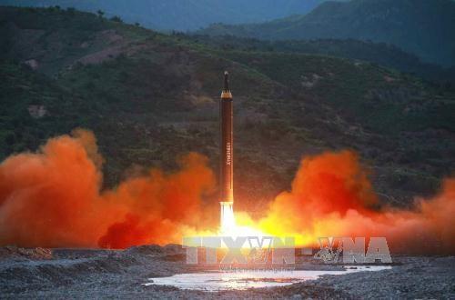 Corea del Norte anuncia una prueba exitosa del misil balístico Hwasong-15 - ảnh 1
