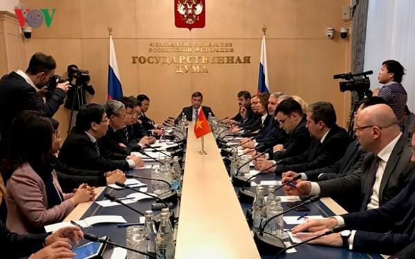 Delegación partidista de Vietnam visita la Federación Rusa - ảnh 1