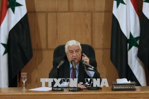 Siria apela a la ONU ante los ataques de de la coalición liderada por Estados Unidos - ảnh 1