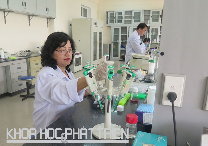 Dinh Thi Bich Lan, una apasionada para las investigaciones científicas - ảnh 1