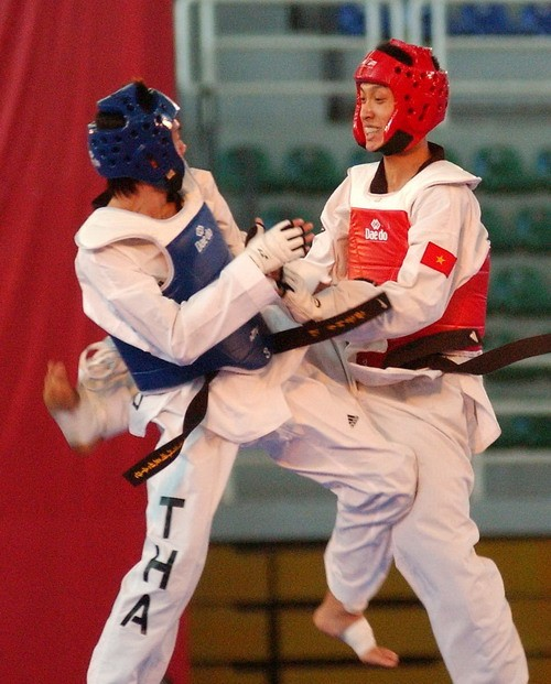 Vietnam nimmt an Taekwondo-German Open in Hamburg teil - ảnh 1