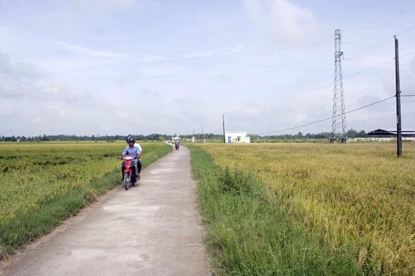 Vietnam berücksichtigt Landwirtschaftsentwicklung - ảnh 1