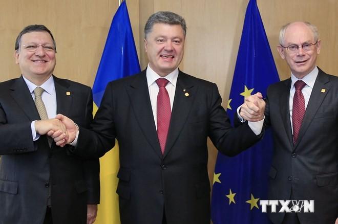 EU ist bereit für Drei-Parteien-Gespräche über das Handelsabkommen mit der Ukraine - ảnh 1
