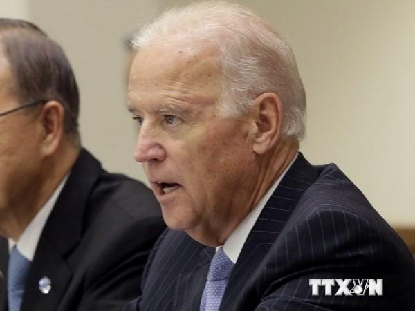 US-Vizepräsident entschuldigt sich bei VAE für Aussage bezüglich der ISIL - ảnh 1