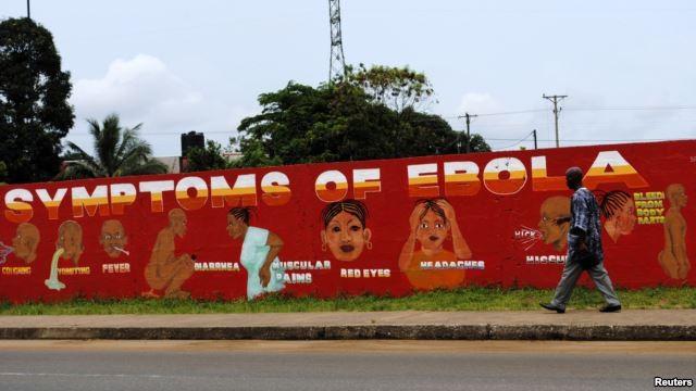 WHO rief alle Länder in der ostasiatisch- pazifischen Region zur Vorbeugung gegen Ebola auf - ảnh 1