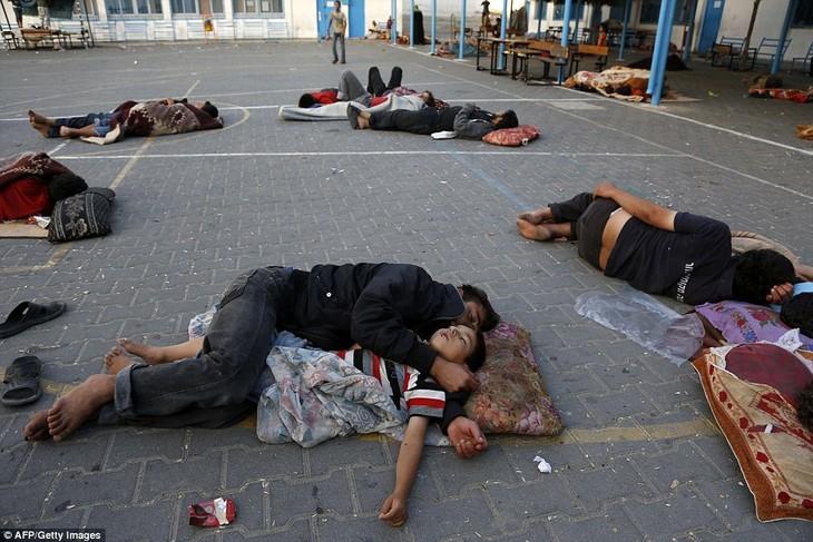 Perspektive des Wiederaufbaus für Gazastreifen - ảnh 2