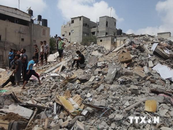 Perspektive des Wiederaufbaus für Gazastreifen - ảnh 1