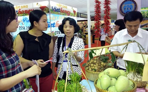 Vietnam Farm Expo 2015 zeichnet landwirtschaftliche Bio-Produkte aus - ảnh 1