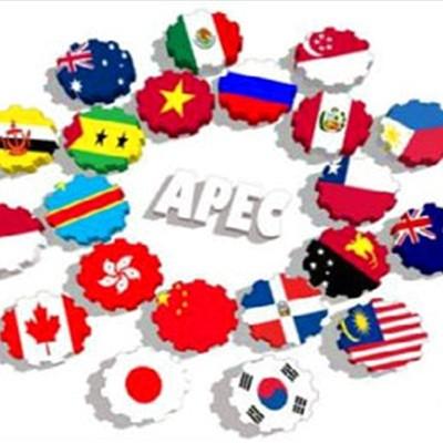 Zweite Sitzung der Nationalkommission des APECs 2017 - ảnh 1