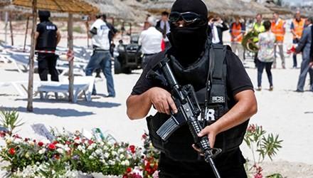 Tunesien vereitelt großangelegten Terroranschlag - ảnh 1
