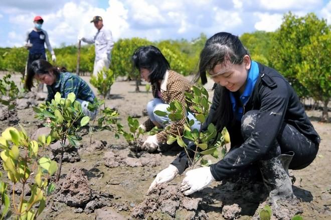 Vietnam und Deutschland verstärken Zusammenarbeit in den Bereichen Ressourcen und Umwelt - ảnh 1