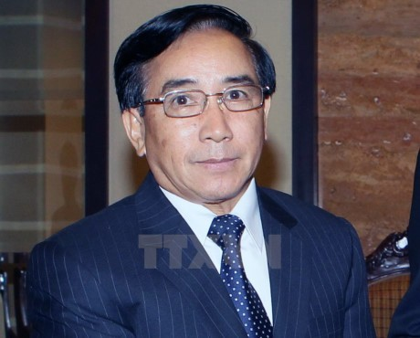 Verstärkung der traditionellen Freundschaft zwischen Vietnam und Laos - ảnh 1