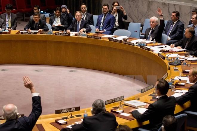 UN-Sicherheitsrat weist Resolutionsentwürfe von Frankreich und Russland zu Syrien zurück - ảnh 1