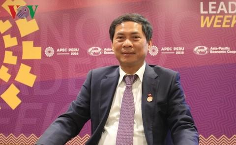 Vietnam ist bereit für das APEC-Jahr 2017 - ảnh 1