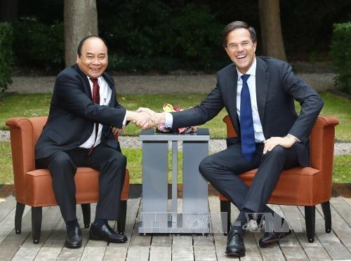 Premierminister Nguyen Xuan Phuc führt Gespräch mit dem niederländischen Premierminister Mark Rutte  - ảnh 1