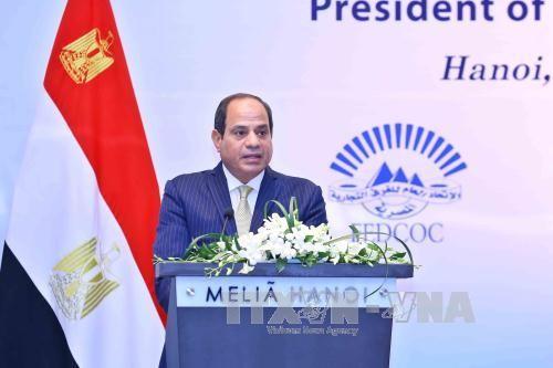 Ägyptischer Präsident beendet seinen Staatsbesuch in Vietnam - ảnh 1