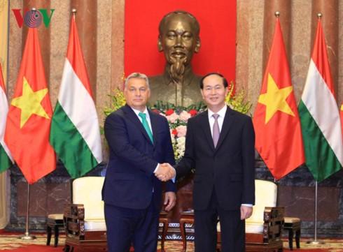 Staatspräsident Tran Dai Quang empfängt den ungarischen Premierminister Orbán Viktor - ảnh 1