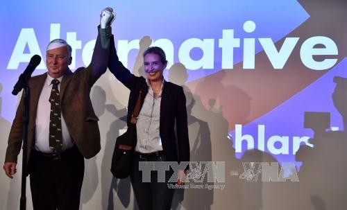 Bundeskanzlerin Angela Merkel: Die AfD wird nicht auf Politik auswirken - ảnh 1