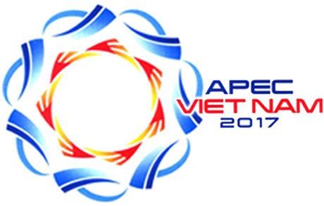 APEC 2017: ອິນໂດເນເຊຍ ສະໜັບສະໜູນບັນດາບຸລິມະສິດຂອງ ຫວຽດນາມ - ảnh 1