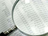 Staatsrechnungshof verbessert das öffentliche Finanzwesen - ảnh 1