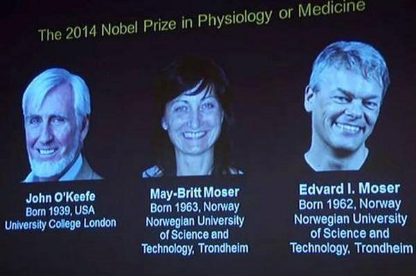 Nobelpreis für Medizin an Wissenschaftler aus den USA und Norwegen - ảnh 1