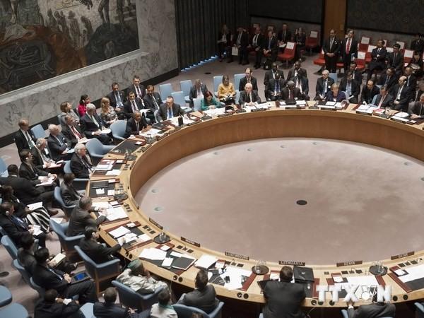Weltsicherheitsrat fordert Weltgemeinschaft zur Hilfe für Irak auf - ảnh 1