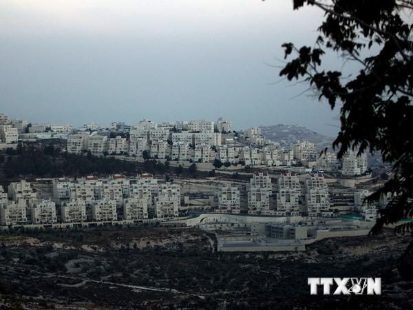 Palästina bittet Sicherheitsrat um Dringlichkeitssitzung - ảnh 1
