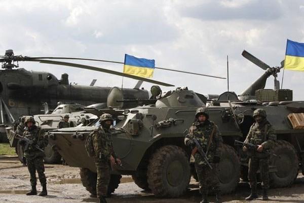 USA und die Ukraine diskutieren die Lage in der Ostukraine - ảnh 1