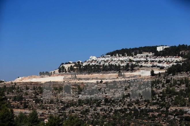 Israel will Bau von 500 Häusern in Jerusalem fortsetzen - ảnh 1