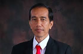 Der indonesische Präsident Joko Widodo wird Indien besuchen - ảnh 1