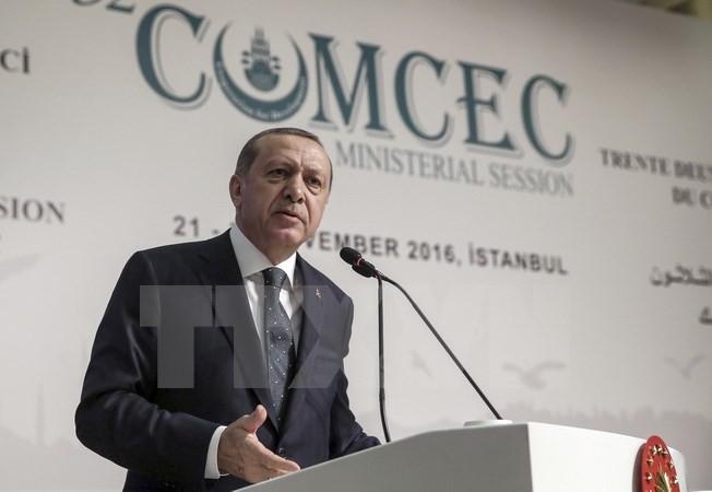 Russland und die Türkei diskutieren über Lage in Syrien - ảnh 1