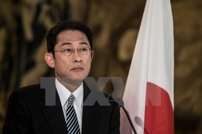Japan und Russland diskutieren über gemeinsame Aktionen auf umstrittenen Inseln - ảnh 1