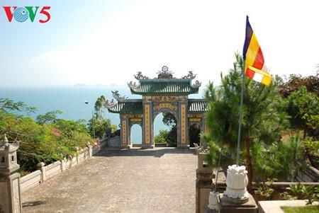 Halbinsel Son Tra - eine exotische Landschaft - ảnh 7
