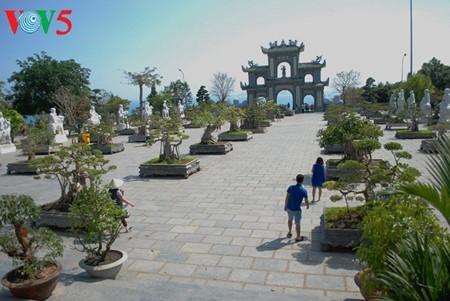 Halbinsel Son Tra - eine exotische Landschaft - ảnh 8