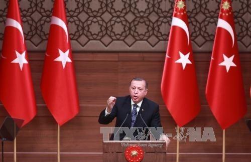 EU bestellt türkischen Botschafter wegen der Rede von Präsident Erdogan ein - ảnh 1