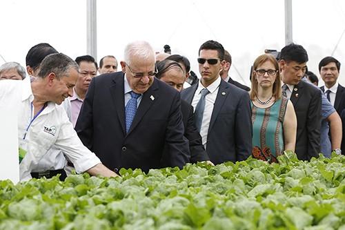 Israels Präsident besucht Landwirtschaftsprojekt VinEco Tam Dao - ảnh 1