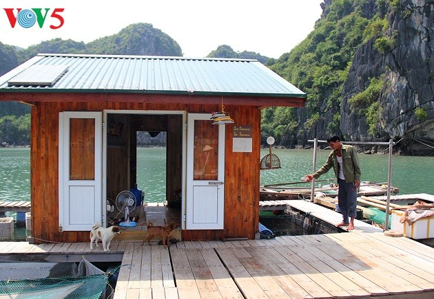 Fischer in Halong-Bucht leben im Einklang mit dem Meer - ảnh 1