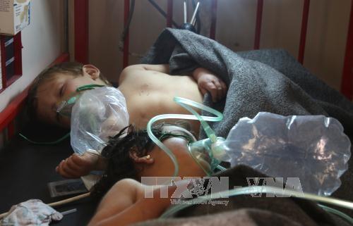 Syrische Regierung bestreit Anwendung von Chemiewaffen - ảnh 1