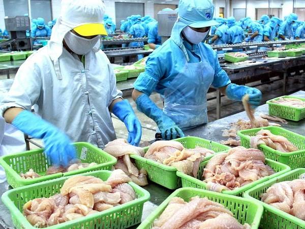 รัฐสภาสหรัฐอนุมัติร่างรัฐบัญญัติที่สร้างอุปสรรคให้แก่ผลิตภัณฑ์ปลาที่ไม่มีเกล็ดของเวียดนาม - ảnh 1
