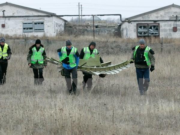 เบลเยี่ยมเรียกร้องให้จัดตั้งศาลอาญาสืบสวนเหตุเครื่องบิน MH17 ตก - ảnh 1