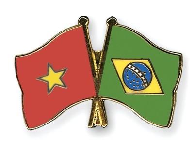 นายกรัฐมนตรี เหงียนเติ๊นหยุง ให้การต้อนรับรัฐมนตรีต่างประเทศบราซิล - ảnh 1