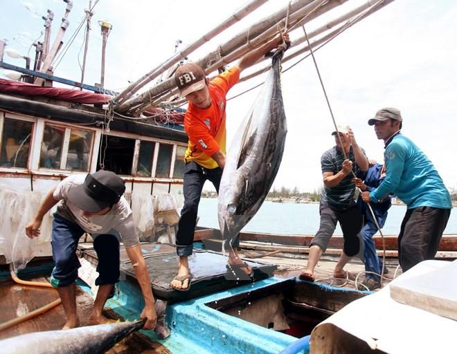 เวียดนามเข้าร่วมการประชุมสุดยอดสัตว์น้ำเอเชียตะวันออกเฉียงใต้และแปซิฟิก - ảnh 1