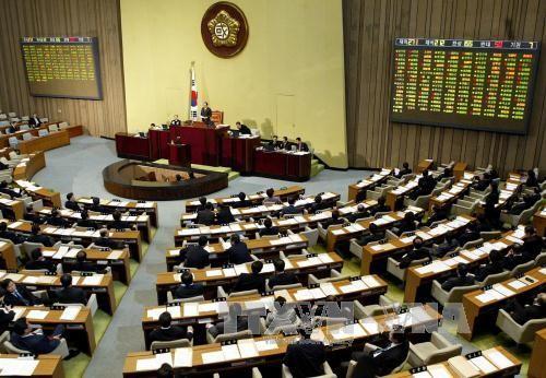 พรรคการเมืองใหญ่ 3 พรรคของสาธารณรัฐเกาหลีได้เห็นชอบร่างรัฐธรรมนูญฉบับแก้ไข - ảnh 1
