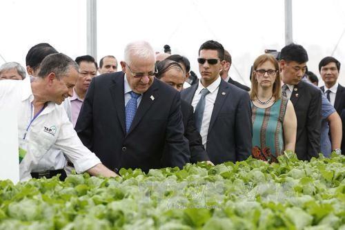ประธานาธิบดีอิสราเอลและภริยาเยือนโครงการลงทุนการเกษตรที่ประยุกต์ใช้เทคโนโลยีชั้นสูง VinEco ตามด๋าว - ảnh 1