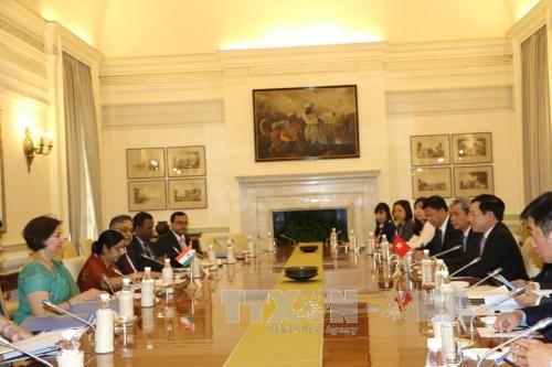 รองนายกรัฐมนตรีและรัฐมนตรีต่างประเทศ ฝ่ามบิ่งมิงห์ เยือนอินเดีย - ảnh 1