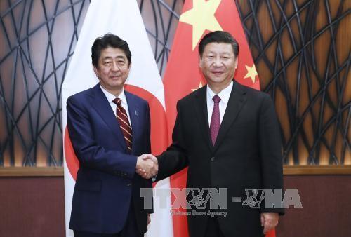 ผู้นำจีน ญี่ปุ่นและสาธารณรัฐเกาหลีพบปะนอกรอบการประชุมเอเปก 2017 - ảnh 1