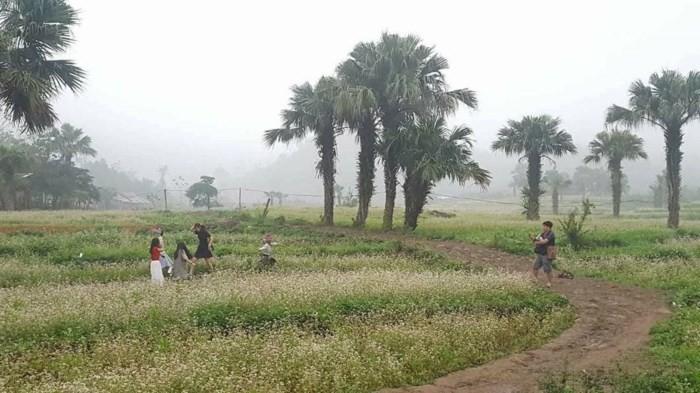 หมู่บ้านแต่น-หมู่บ้านท่องเที่ยวที่เต็มไปด้วยเอกลักษณ์ของชนเผ่าม้ง - ảnh 1