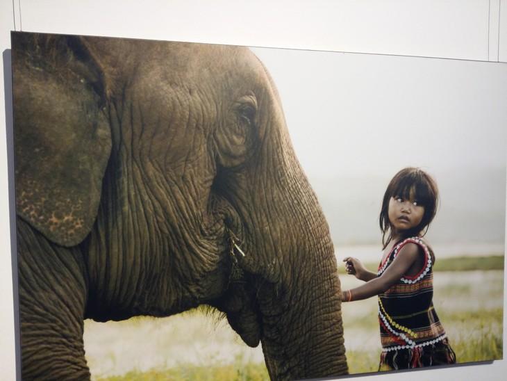 Vietnam's ethnic minorities through the lens of French photographer  - ảnh 2