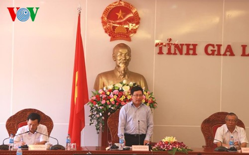 Deputy Prime Minister Pham Binh Minh visits Gia Lai - ảnh 1